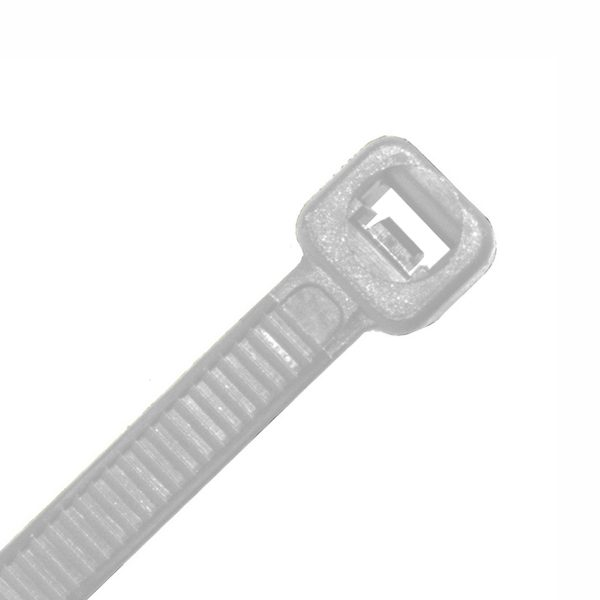 Cable Tie, Nylon UV, Natural, 200mm x 4.8mm